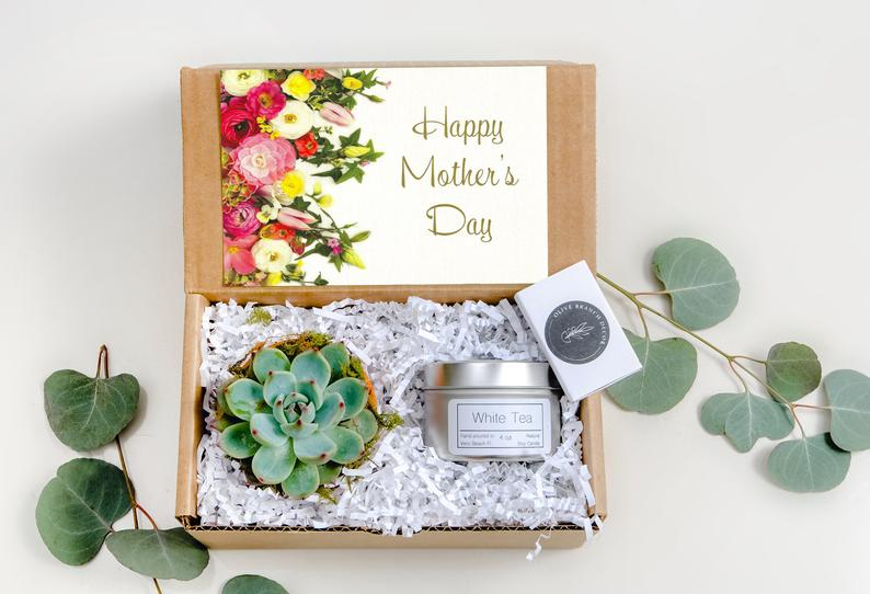 Mothers Day gift Box Succulent